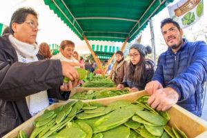 El domingo, primer mercado del trueque en Chapulte ...